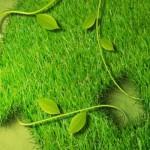 zeleniposlovi